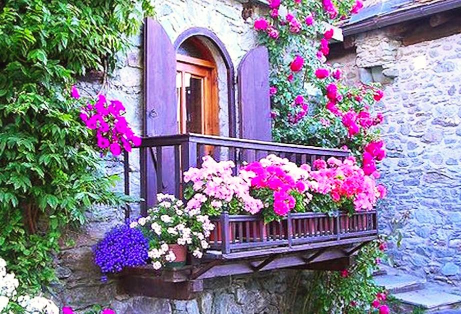 Al via la seconda edizione del concorso «Balconi e angoli fioriti ...
