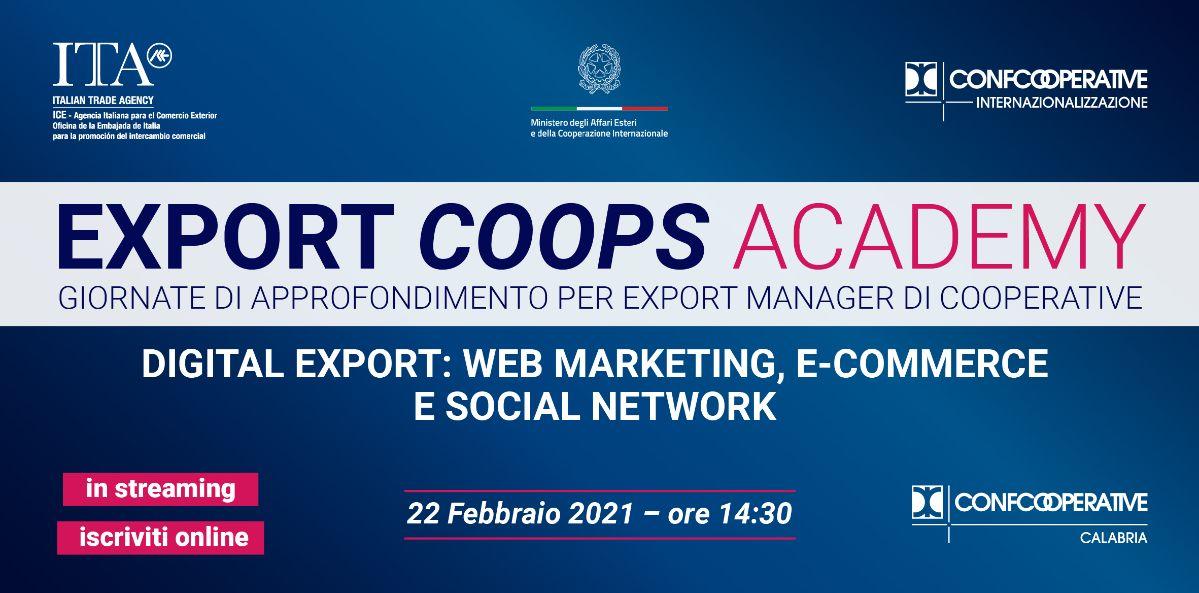 digital-export-cci-calabria