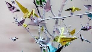 un-albero-della-memoria-per-coltivare-la-speranzapart