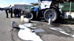 allevatori-latte-crotone-625x350