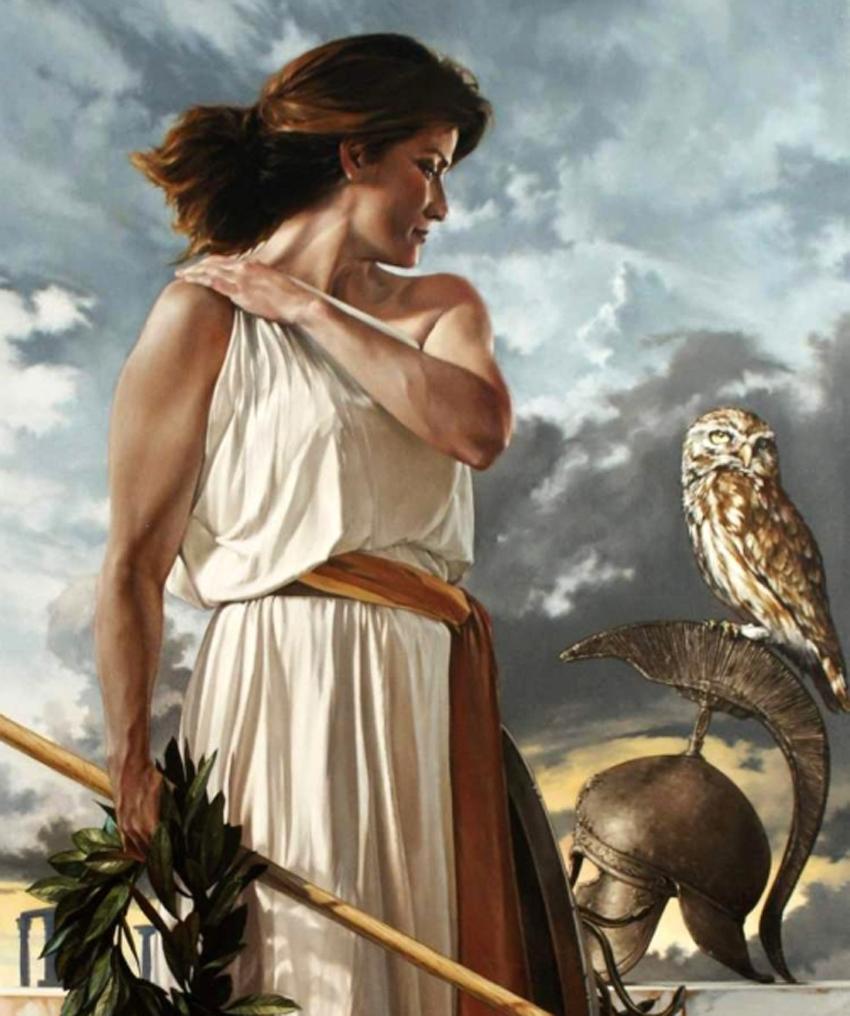 La leggenda dell ulivo il sacro albero del mediterraneo - Mitologia greca mitologia cavallo uomo ...