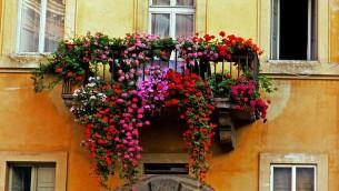 balcone-fiorito-e1430384529353