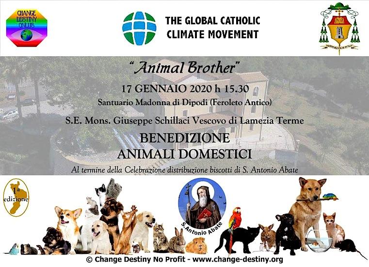 change-destiny-org_animal_brother