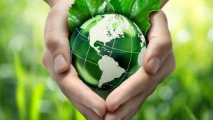 """Chiellino: """"Giornata Mondiale Ambiente grande sfida per cittadini, imprese e politica"""""""