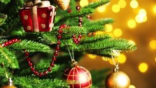 christmas-tree-today-tease-1-151201_dd6ec0167e769c87de32fd740c83f70a