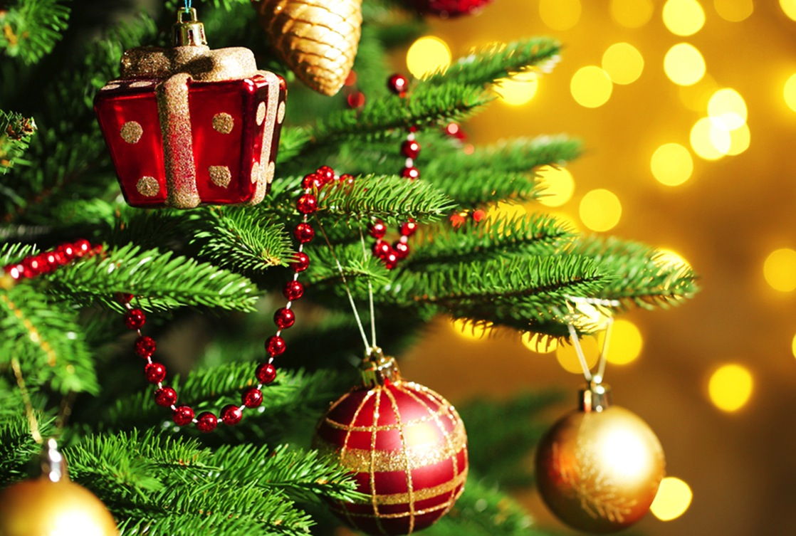Albero Di Natale Origini.L Albero Di Natale Origini Storia E Curiosita Di Un Antichissima Tradizione