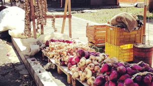 Fiera delle cipolle a Lamezia Terme (foto Igers Lamezia Terme)