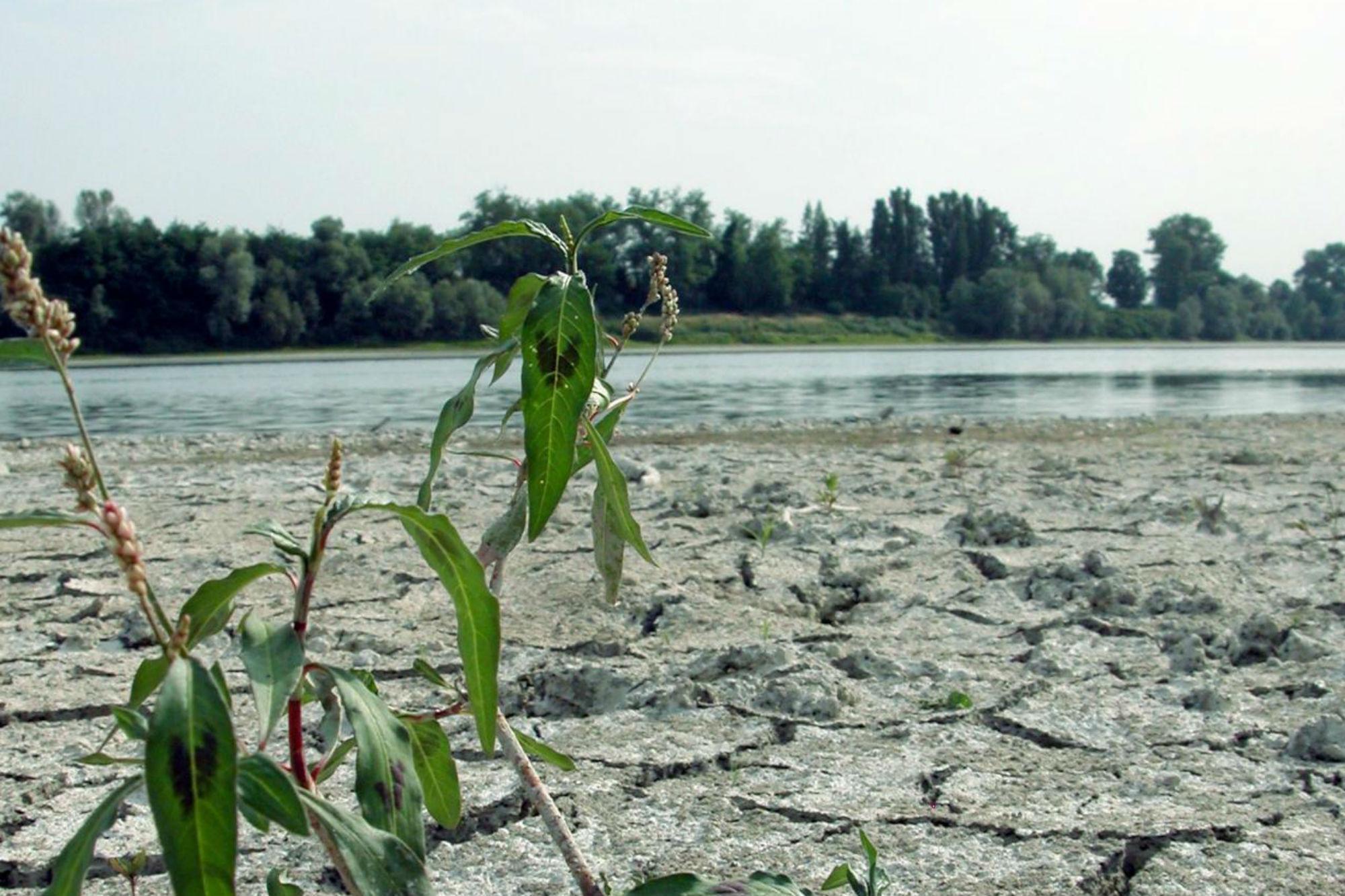 Clima, ondate di calore e alluvioni: l'impatto sulle città italiane