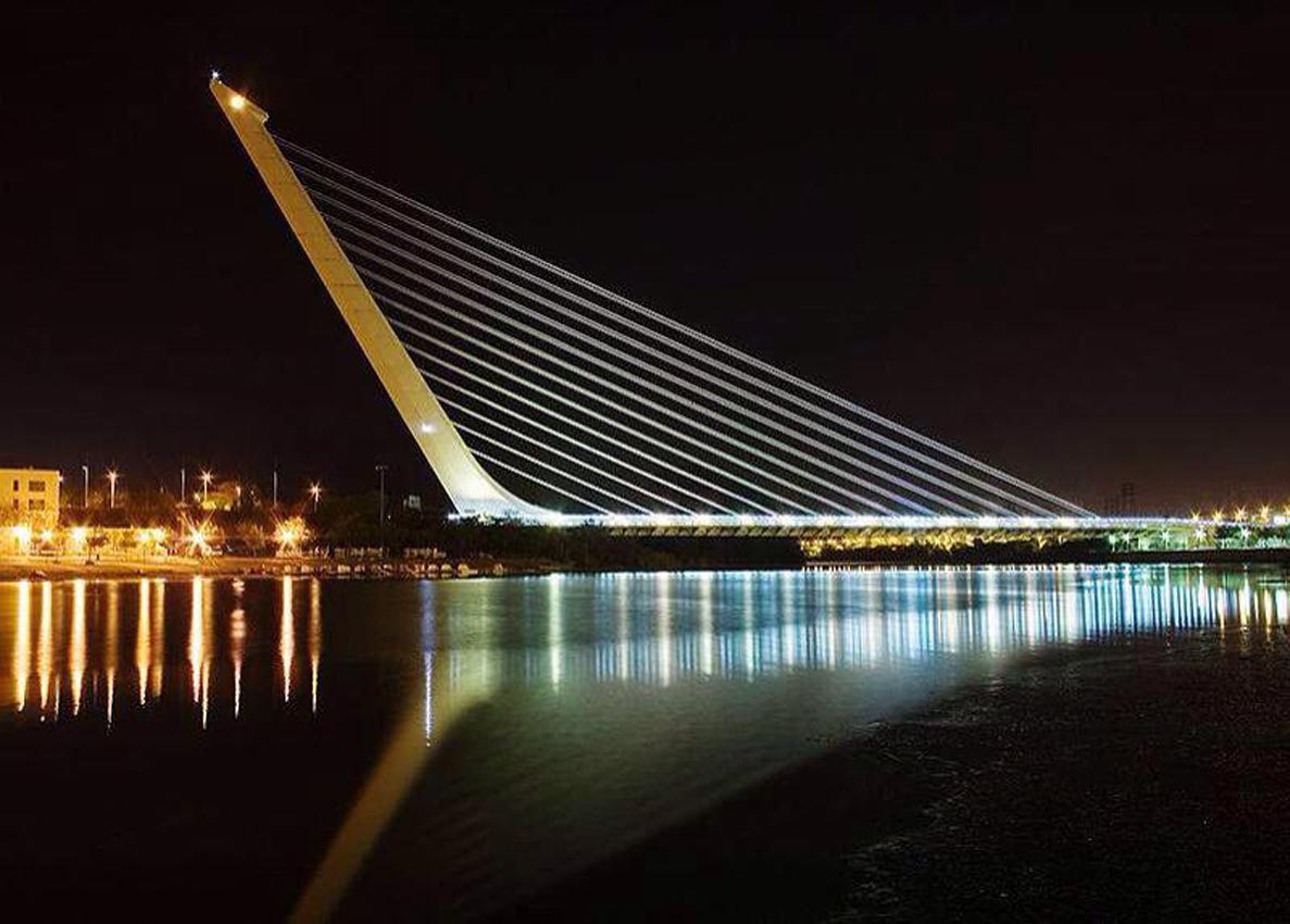 Cosenza il ponte di calatrava esempio di for Progettista di ponti online gratuito