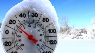 freddo-cold-weather1