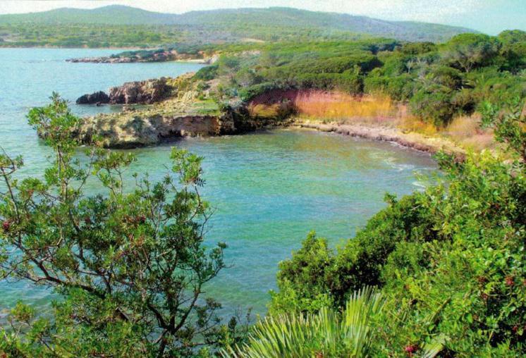 Isole covid free, Sicilia e Sardegna si candidano