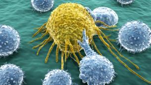 linfociti-t-attaccano-una-cellula-tumorale