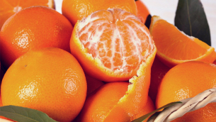 mandarini-1024x768