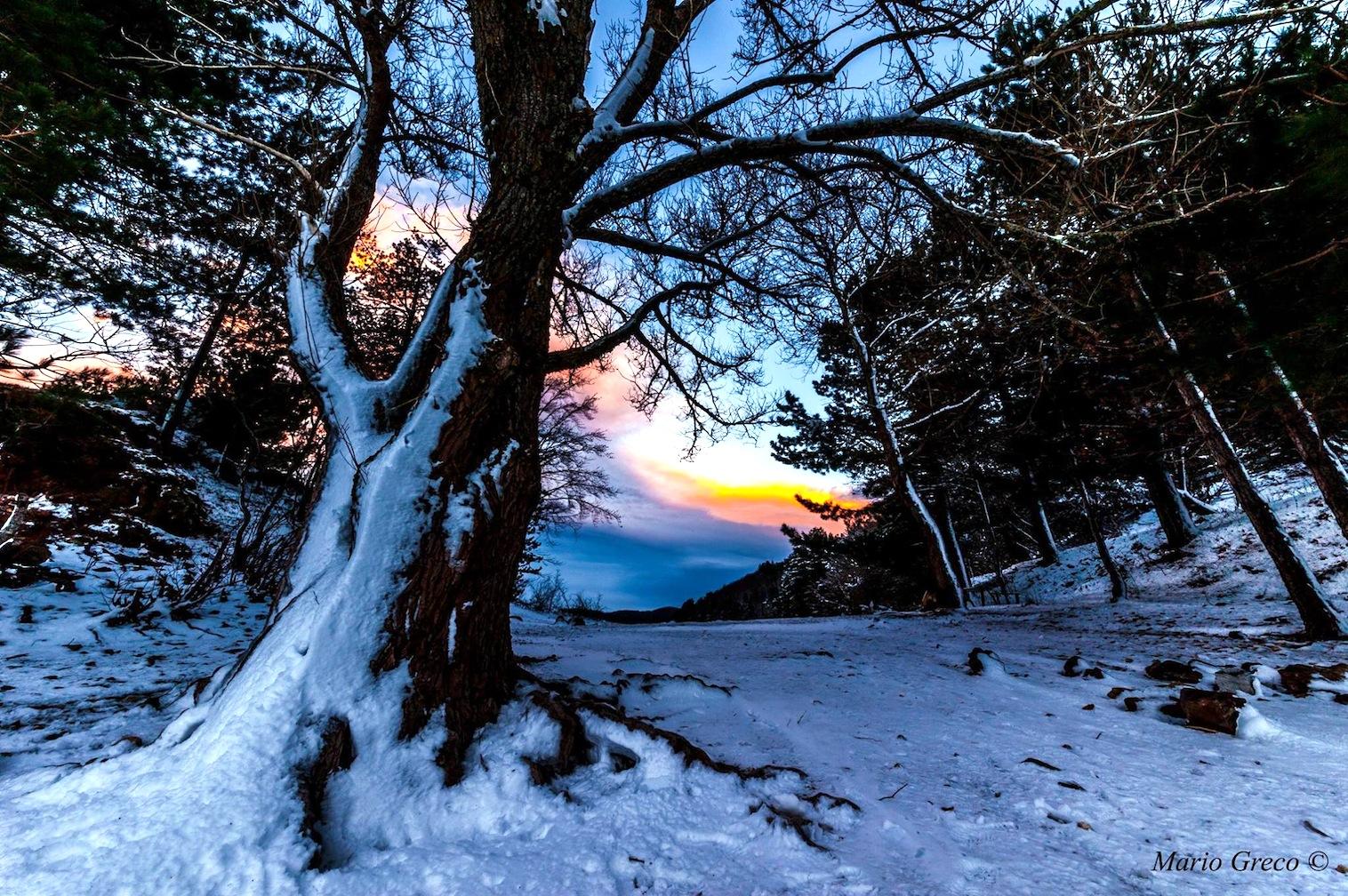 La direzione del vento  (foto Mario Greco)