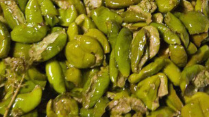 olive-schiacciate-c