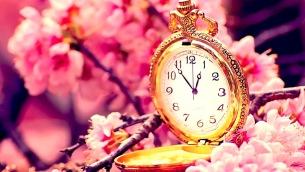 orologi-storici-ciliegio-in-fiore-ramoscello-fiorito-172908