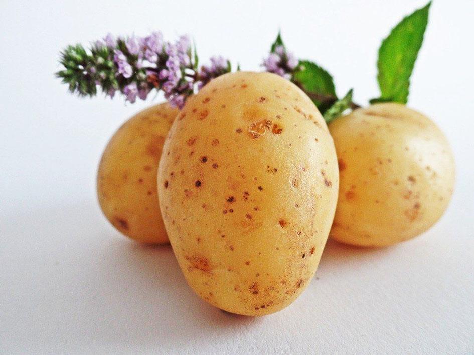patate-2-1