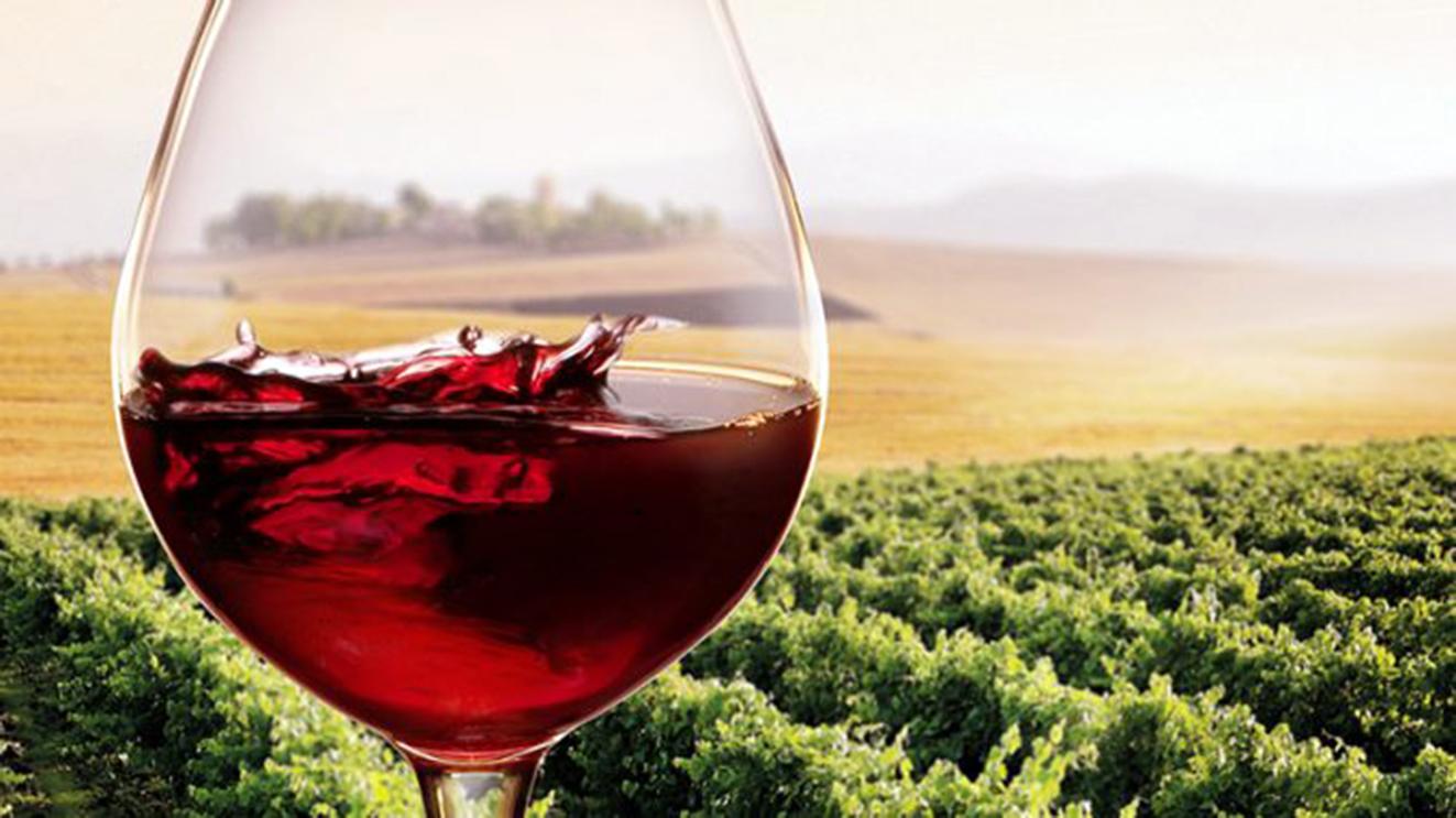 vino-siciliano-678x381