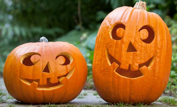 zucche-halloween